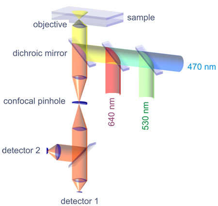 Schematic of a single-molecule fluorescence spectrometer: Three excitation lasers with different wavelengths are combined and that light is reflected by a dichroic mirror (reflective for laser excitation, transparent for fluorescence emission) into the objective, which focuses it into a tiny spot. Excited fluorescence light is collected by the same objective, focused through a confocal pinhole for background suppression, and finally detected by single-photon sensitive detectors.