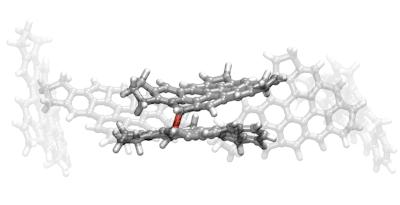 Reactive dimerization of pi-diradicals