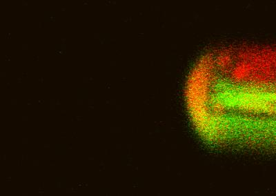 Scientists Create Minuscule Reaction Chamber