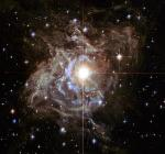Hubble Portrays Bright Southern Hemisphere Star Swaddled in a Gossamer Cocoon of Reflective Dust