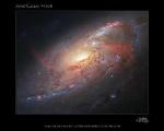 Renowned Astro-Photographer Assembles Photo Illustration of Magnificent Spiral Galaxy
