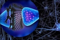 Review Highlights Synthesis and Application of Graphene Quantum Dots