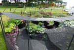 ARI Galaxy Garden Wins Creativity Award at 2013 RHS Tatton Show