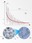 Combined Simple Models May Help Interpret Cosmological Observations of the Early Universe