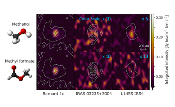 Chemically Rich Young Protoplanetary Disks have Similar Organic Molecule Compositions