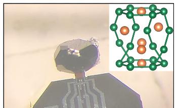 New Metallic Specimen Could Support Electron-Phonon Liquid Phase